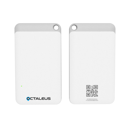 octaleus_1